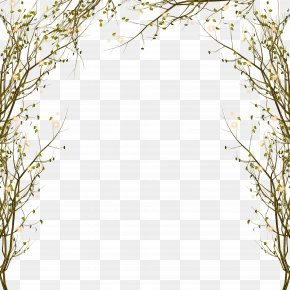 Branch Decorative Border Pattern - Tree Branch Clip Art PNG