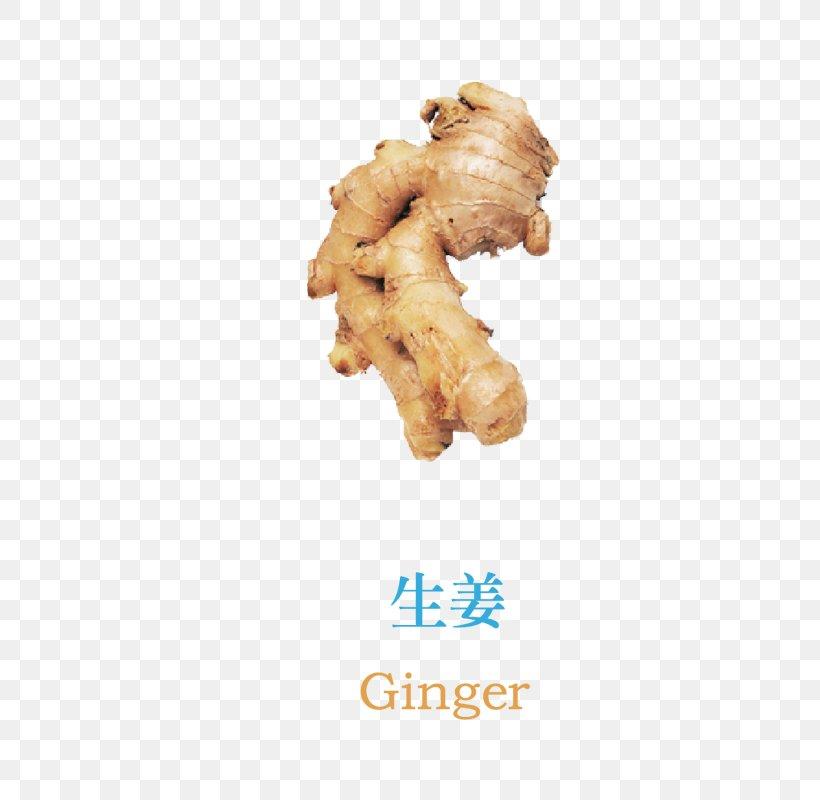 Cancer Food Neoplasm Ginger Vegetable, PNG, 800x800px, Vegetable, Carrot, Factory, Food, Fruit Download Free