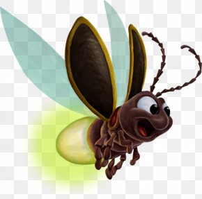 An Insect - Bee Butterfly Insect Clip Art PNG