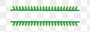 Vector Dividing Line Separating Solid Green Grass - Line Green Euclidean Vector PNG