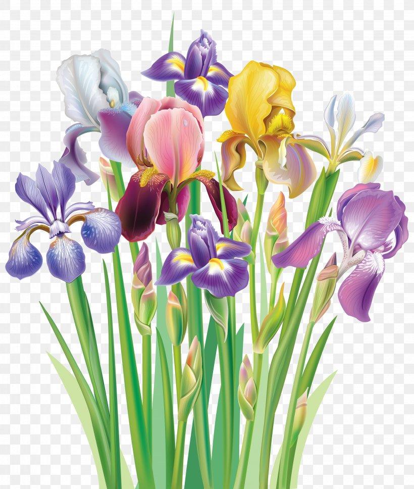 Purple Iris Clip Art