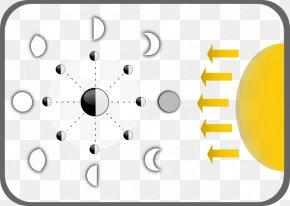 Blank Eye Diagram - Supermoon Diagram Lunar Phase Clip Art PNG