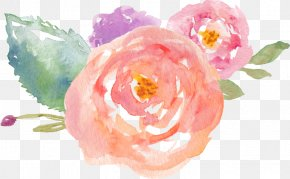 Flower - Watercolor Painting Drawing Clip Art PNG