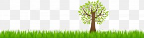 Natural Environment - Earth Natural Environment Ecology PNG