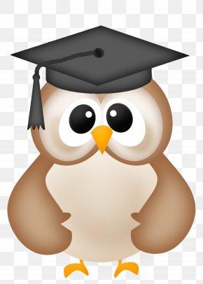 Graduation - Owl Graduation Ceremony Clip Art PNG