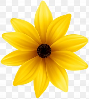 Yellow Flower Clip Art Image - Yellow Dahlia Petal PNG