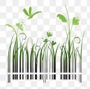 Barcode Grass - Barcode Shutterstock Stock Photography QR Code PNG