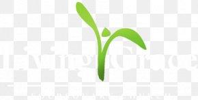 Leaf - Leaf Logo Brand Grasses PNG