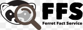 Jeremy Corbyn Labour Party Leadership Campaign 201 - Glasgow Fact Checker The Ferret Daily Record PNG