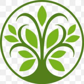 Tree - Tree Logo Leaf PNG