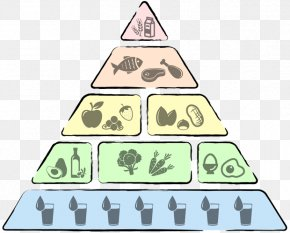 Health - Low-carbohydrate Diet Food Pyramid Health Nutrition PNG