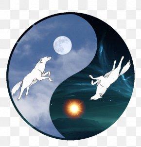 Wolf And Moon - Marine Mammal PNG