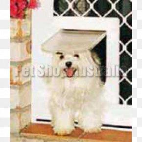 Security Door - Maltese Dog Havanese Dog Coton De Tulear Cat West Highland White Terrier PNG