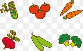 Vector Vegetables - Fruit Vegetable Cartoon Clip Art PNG