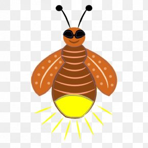 Firefly Pic - Clip Art PNG