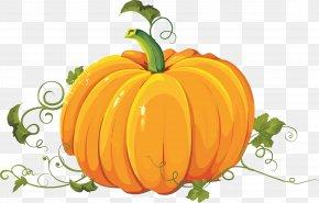 Pumpkin - Clip Art Pumpkin Pie Field Pumpkin PNG