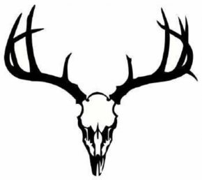 Free Deer Pictures - White-tailed Deer Tattoo Skull Clip Art PNG