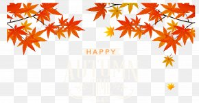 Autumn Leaves - Red Leaves Valley Autumn Leaf Color PNG