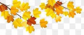 Autumn Branch Clipart - Autumn Computer File PNG