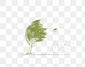 Wind - Leaf Branch Wind Tree PNG