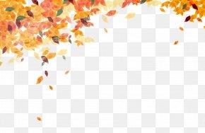 Golden Autumn Leaves Falling Background - Autumn Leaf Color Clip Art PNG