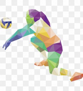 Gorgeous Color Female Volleyball Players Silhouette - 2016 Summer Olympics 2012 Summer Olympics Volleyball Sport PNG