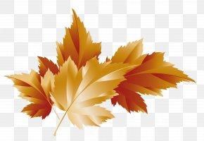 Fall Transparent Leaves Decor Picture - Autumn Clip Art PNG