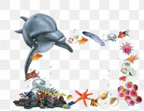 Sea Animals - Child Picture Frames Birthday Kindergarten PNG