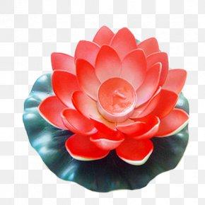 Red Gradient Lotus Lamp - Lamp Download PNG