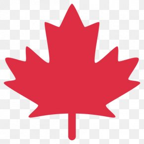 Maple Leaf - Flag Of Canada Maple Leaf Clip Art PNG