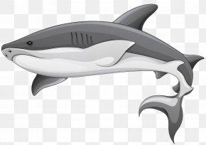 Shark - Shark Fin Soup Clip Art PNG