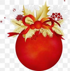 Christmas Plant - Christmas Ornament PNG