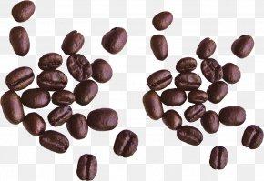 Coffee Beans Image - Irish Coffee Espresso Cappuccino Coffee Bean PNG