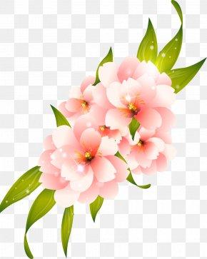 Flower - Flower Lilium Clip Art PNG