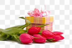 Tulips And Gift Box - Flower Bouquet Gift Birthday Birth Flower PNG