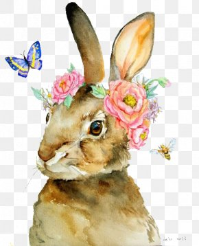 Rabbit - The Tale Of Peter Rabbit T-shirt Watercolor Painting Illustration PNG
