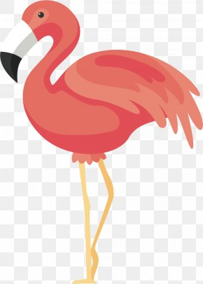 Pink Red-crowned Crane - Flamingos Bird Icon PNG