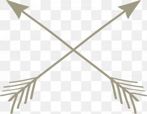 Arrow - Arrow PNG
