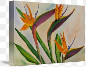Flower - Acrylic Paint Watercolor Painting Modern Art Flower Still Life PNG