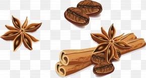 Vector Hand-painted Star Anise Cinnamon - Star Anise Cinnamon PNG