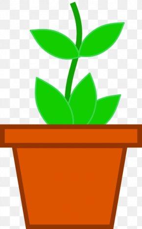 Pictures Of Pot Plants - Flowerpot Houseplant Clip Art PNG