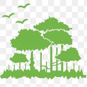 Environment Picture - Environment Clip Art PNG