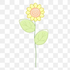 Yellow Sunflower Flowers - Flora Petal Illustration PNG