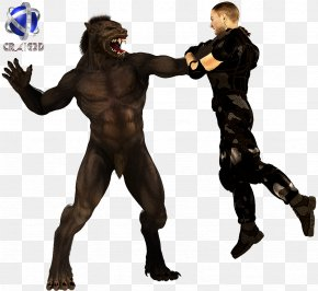 Werewolf - Werewolf 3D Rendering 3D Computer Graphics 2D Computer Graphics PNG