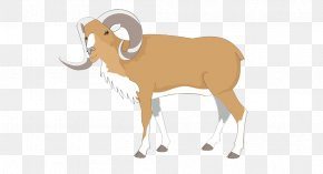Goat - Bighorn Sheep Dall Sheep Goat Clip Art PNG
