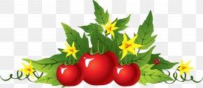 Tomato - Garden Tool Gardening Garden Fork PNG
