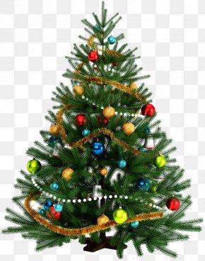 Christmas - Ded Moroz New Year Tree Holiday Snegurochka PNG