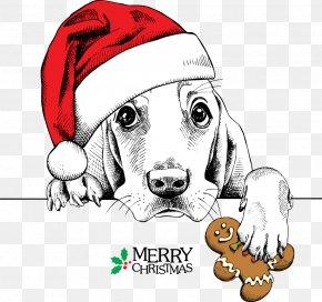 Meng Meng Dog Wearing Christmas Hats - Basset Hound Dachshund Pug Santa Claus Christmas PNG