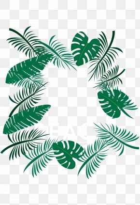 Palm Leaves Download PNG
