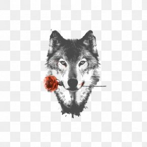 Sketch Gray Wolf - Arctic Wolf HTC Desire HD High-definition Video Display Resolution Wallpaper PNG